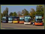 Reiseveranstalter warten mit ihren Bussen (MAN, NEOPLAN, SETRA, VOLVO) nahe des Müritzseums in Waren Müritz auf ihre Reisegruppen. - 17.09.2014